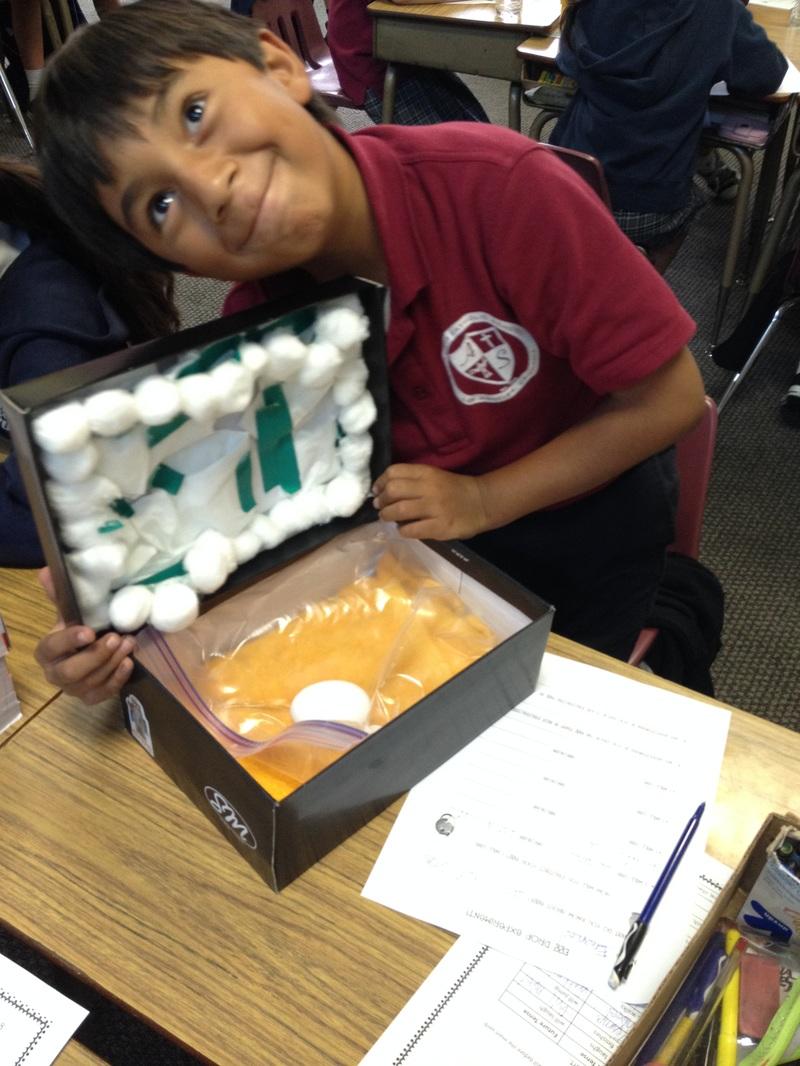 ms padillas class egg drop box samples